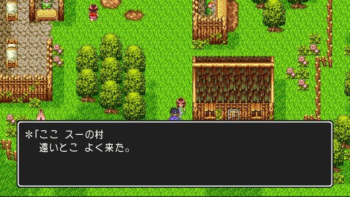 Switch版ドラクエ3 dq3  ドラゴンクエスト3 スー